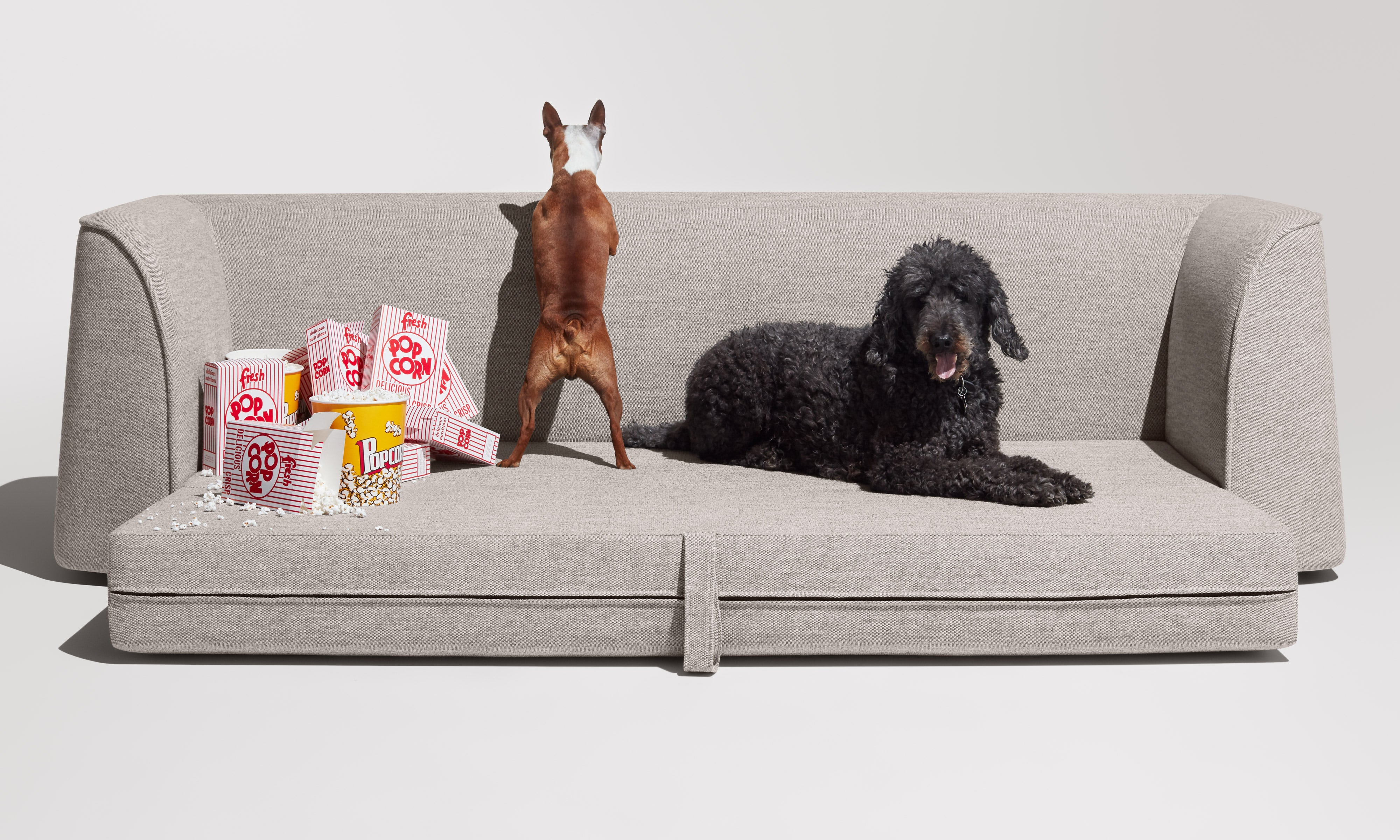 Thataway Modern Sleeper Sofa by Blu Dot